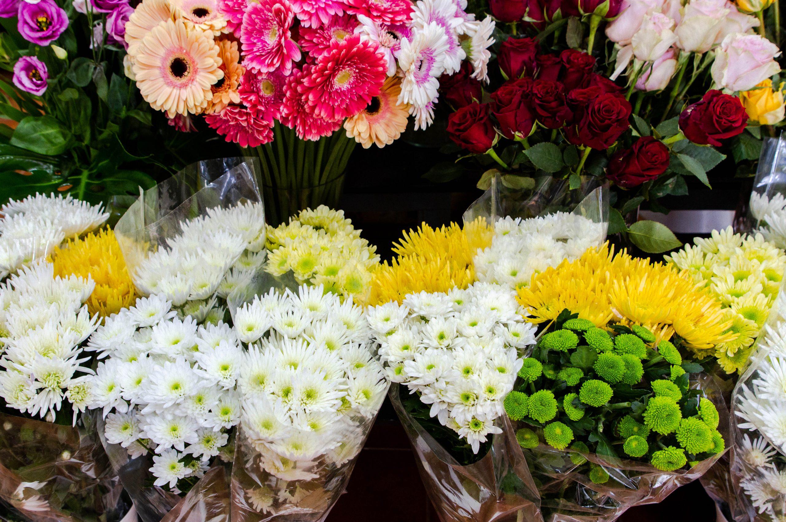Florista do Centro